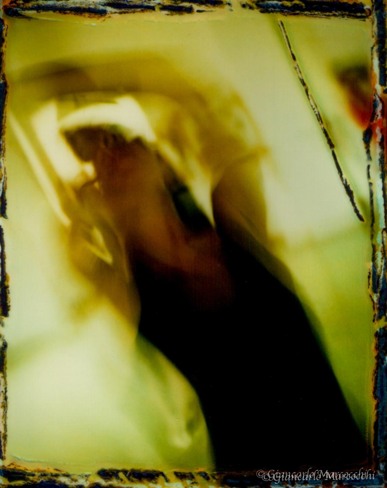 Danza in polaroid